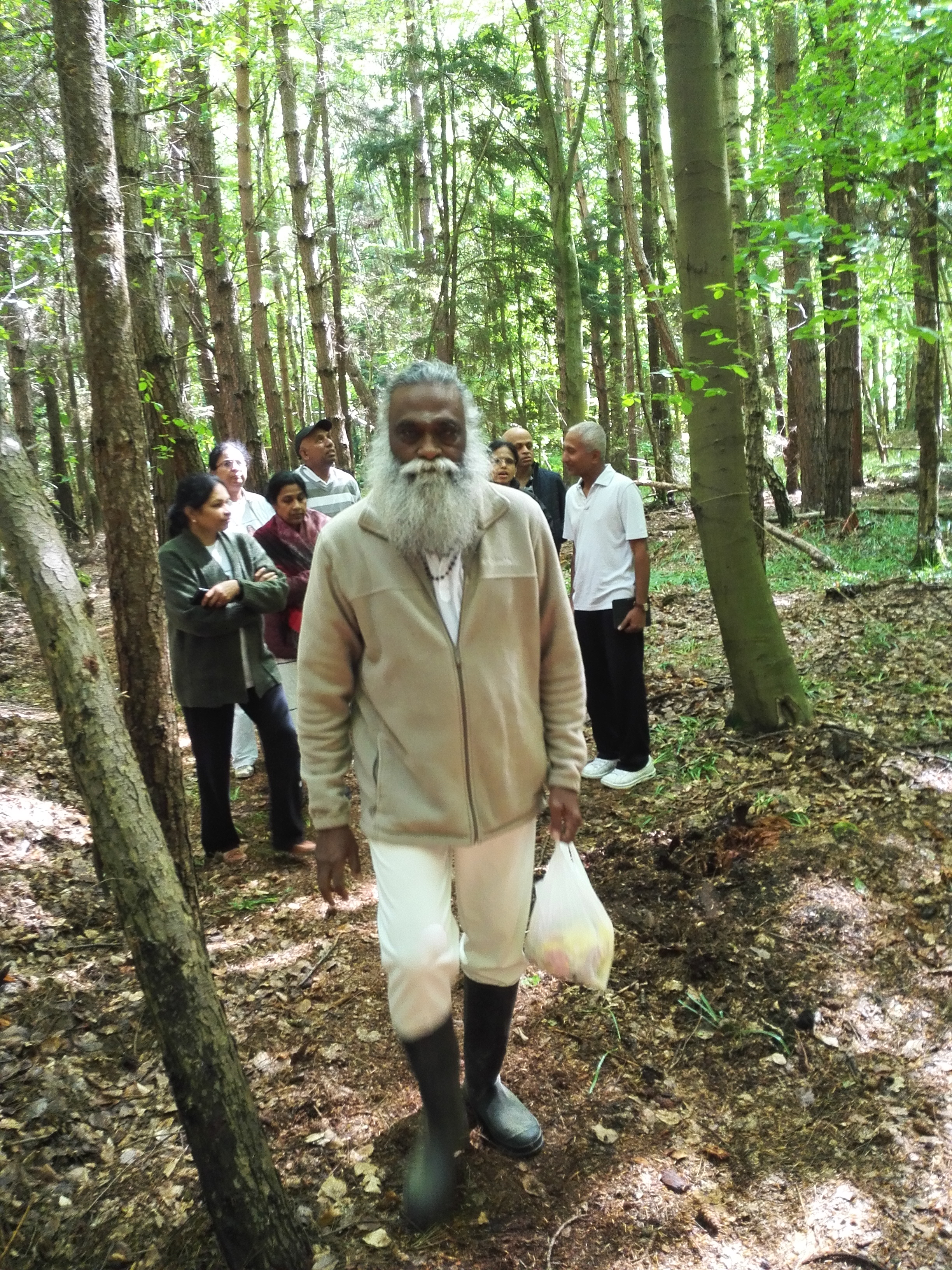 Babaji's Forest retreat Ashram in London, UK, Brent wood